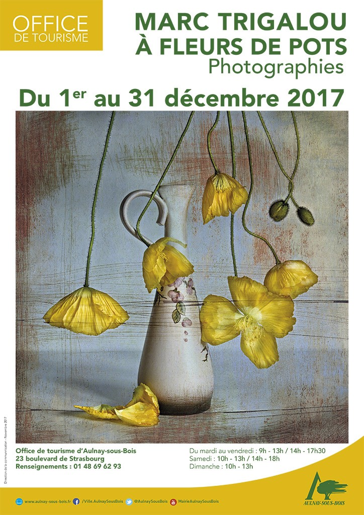 EXPOSITION A L'OFFICE DE TOURISME D'AULNAY-SOUS-BOIS DU 1ER AU 31/12/2017